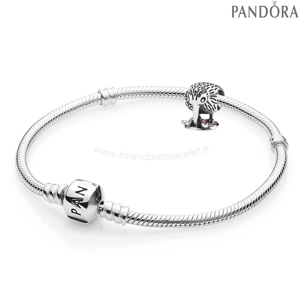 Pandora Soldes Kiwi Bird Bracelets And Charm Gift Set